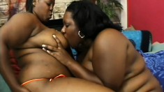 Chunky black milfs taking each other's pussies to climax with sex toys