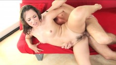 Horny stallion begs Kristina Rose to stick his dick in her cunt