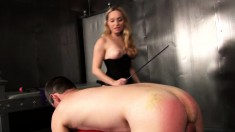 Stacked Blonde Aidan Fucks Her Man's Tight Ass With A Strap-on Dildo