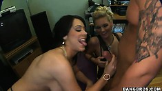 Three hos in slutty clothes get on all fours to get an orgy going