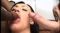 Tattooed brunette hottie gobbles up a pair of dicks and more in this interracial threesome