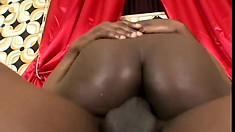 Cocoa Damone adores the sensation of a big cock exploding inside her