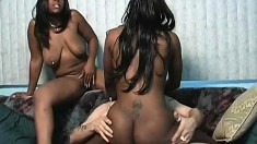 Two black bi chicks give their twats and his dick their full attention