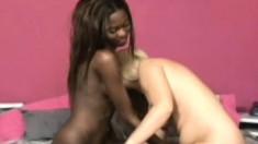 Jasse Monroe and Adrianna Davis enjoy some interracial lady loving